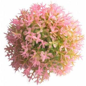 biOrb Pink topiary ball