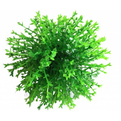 biOrb Green topiary ball