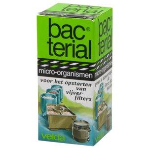 Velda Velda Bacterial Filterstart 20 ml