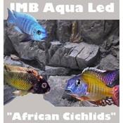 JMB african cichlids aqua light 09w / 030cm
