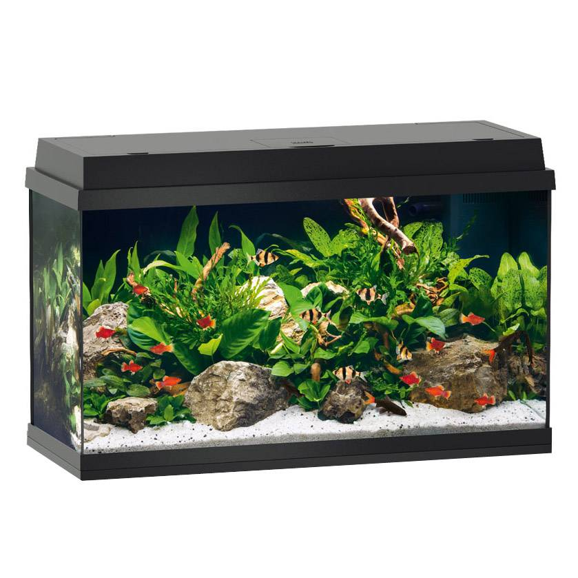 Juwel aquarium multilux led einsatzleuchte 80 cm prima for Aquarium juwel