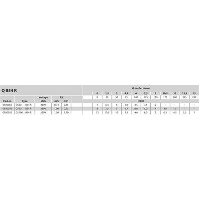 "Mega Dompelpomp RVS 25/32 x 1 1/2"" x 1 1/2"" binnendraad x slangtule 230V zilver type Q 1100 B54 R met vlotter"