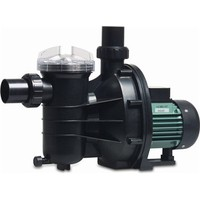 "Hydro-S Zwembadpomp 50 mm / 1 1/2"" metrisch/imperial lijmmof 3,3A 230V type SS075 met RCD stekker"