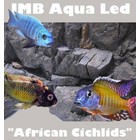 AquastoreXL African Cichlids SMD LED 17,2w / 120cm