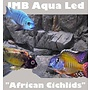 AquastoreXL African Cichlids SMD LED 21,6w / 150cm