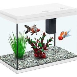 Aquatlantis kids aquaria