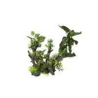 Aqua D'ella Flora-scape 1 XL