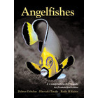 Angelfishes guide