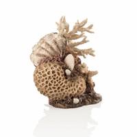 biOrb Koraal-schelpen ornament