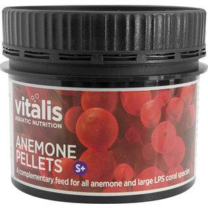 Vitalis Anemone Food