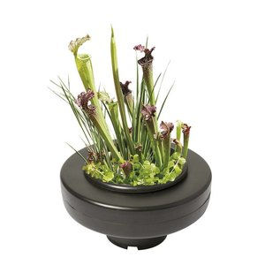 AquastoreXL Floating Plant Basket - 22cm rond