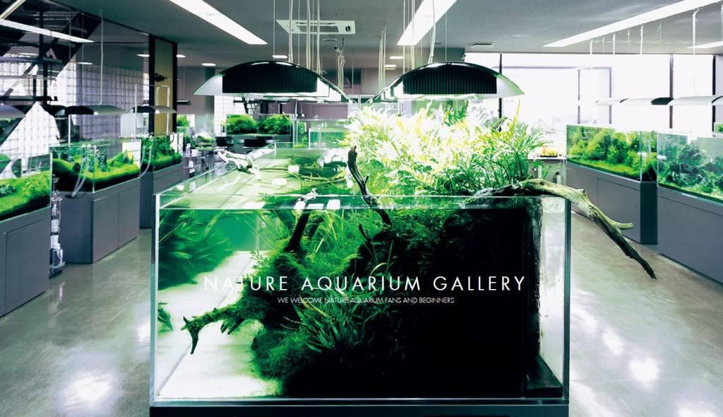 aqua design amano ada aquastorexl. Black Bedroom Furniture Sets. Home Design Ideas