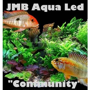 AquastoreXL Community SMD LED 17,2w / 115cm