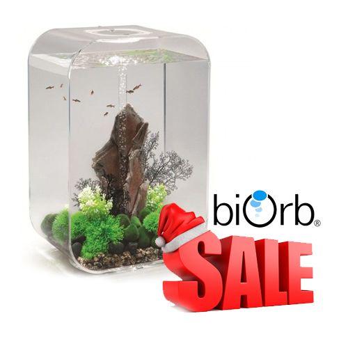 Super feestdagen Biorb Sale