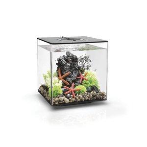 biOrb Cube 30 LED Zwart