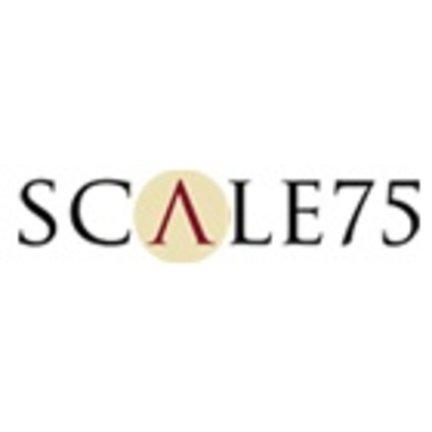 Scale 75 Paint