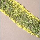 MiniNatur Flowers yellow 1 : 87 - 998-22 S