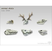 Tabletop-Art Animal Skulls - TTA600020