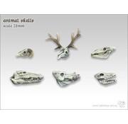 Tabletop-Art Animal Skulls - TTA600020
