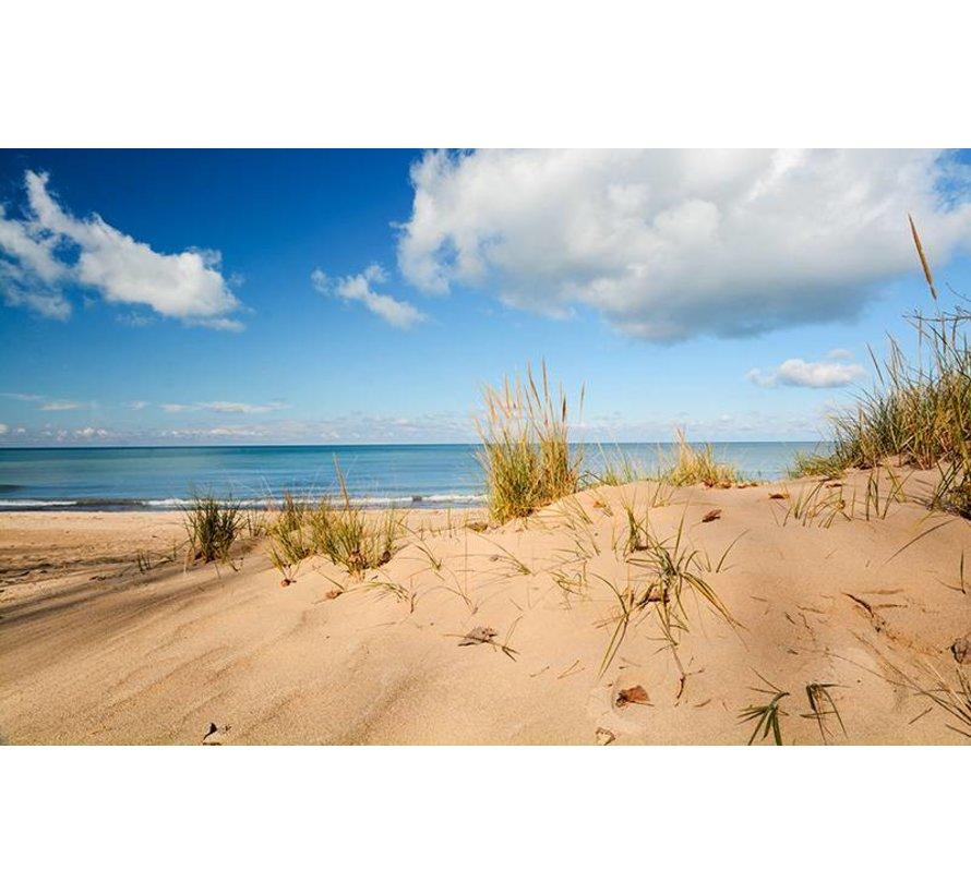 Terrains Beach Sand - Diorama Series - 250ml - AK-8019