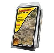 Woodland Scenics Learning Kit Rock Faces - LK951