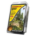 Woodland Scenics Learning Kit Scenery Details - LK956