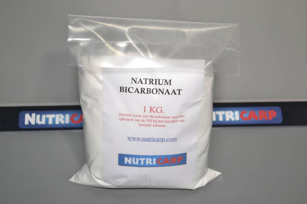 bicarbonaat kopen ah