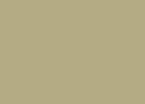 007-yellowbeige.jpg
