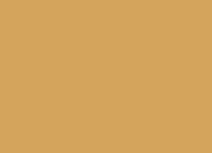 025-apricot.jpg