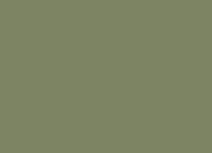 041-cactus.jpg
