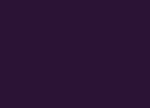 048-aubergine.jpg