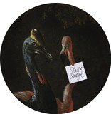 Groovy Magnets magnet sticker Crackle 'Cassowary and friend' birds