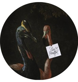 Groovy Magnets magnet sticker Cassowary and friend