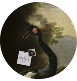 Groovy Magnets magneetsticker Crackle 'Majestic crane', kraanvogel