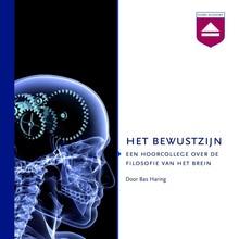 Bas Haring Het Bewustzijn - Een hoorcollege over de filosofie van het brein