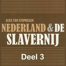Alex van Stipriaan Nederland & de slavernij - deel 3: Verzet tegen slavernij