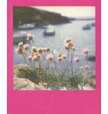 Кассета Polaroid 600 розовые рамки