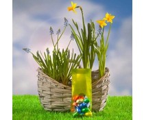 Paasgeschenken! Евтини Велекденски пролетта е ВЪВ ВЪЗДУХА покупка?