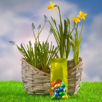 Paasgeschenken cheap easter gifts spring is in the air buy cheap easter gifts spring is in the air buy negle Images