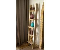 Decoratietrap gemaakt van steigerhout, voorzien van 6 treden (160 cm hoog)