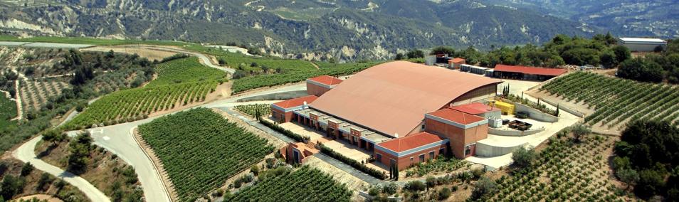 semeli-vineyard-luxurious-drinks