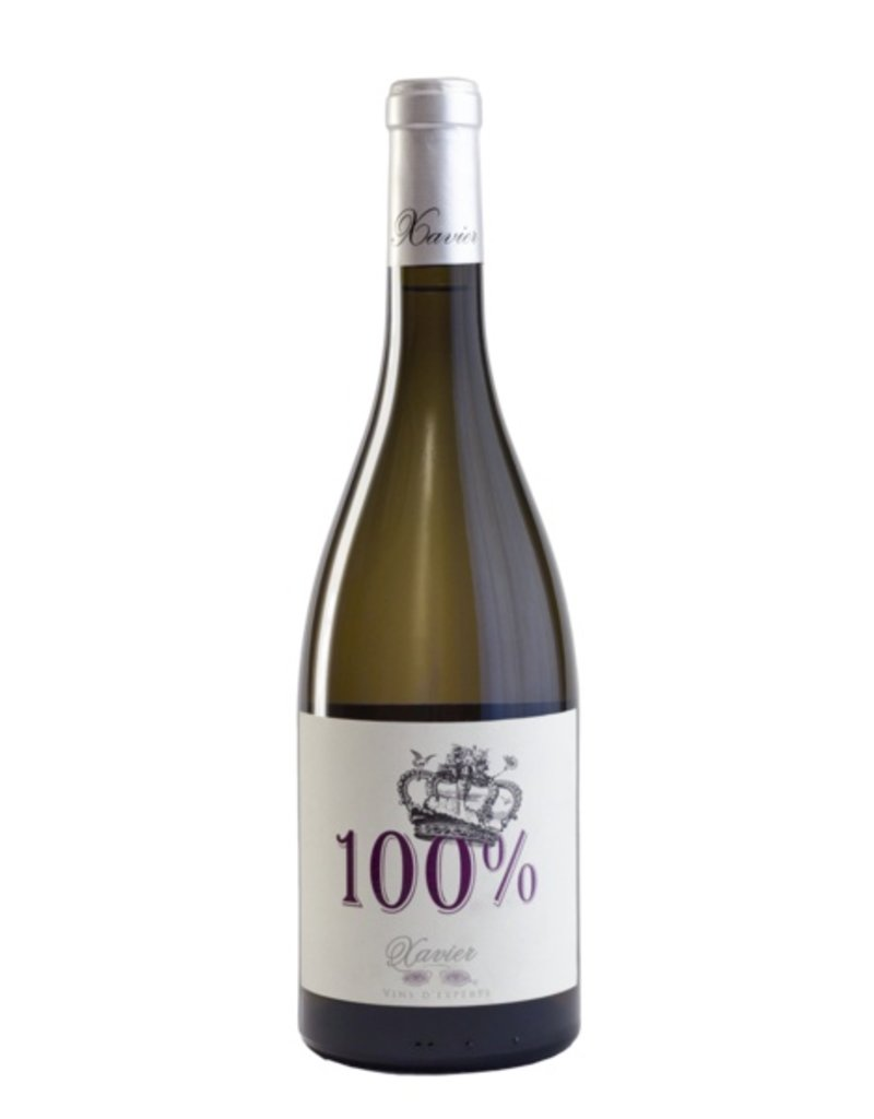 100% Blanc Cotes du Rhone 2013 Xavier Vins 75cl