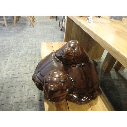 Schildpad duo