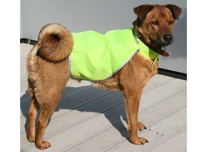♣ Gele Dog Safety Jackets (veiligheid jasjes voor honden)