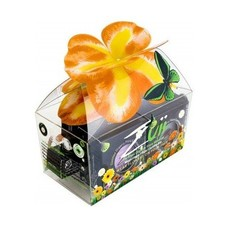 Zuii Organic Natural Giftbox