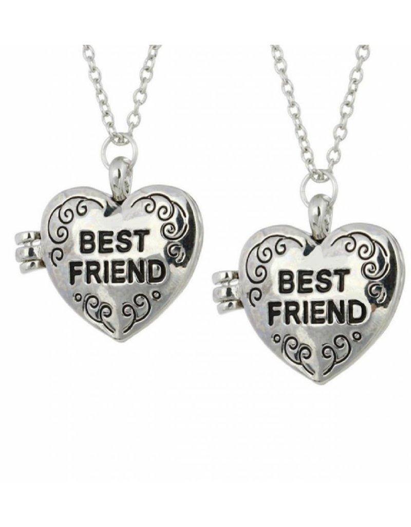 KAYA sieraden Medaillon kettingen 'Best Friend'