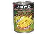 AROY-D Bambus-Shoot-Tipp