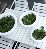 Elho Pure soft bowl - le pot de fleur élégant parfait pour votre jardin, terrasse ou à l'intérieur!