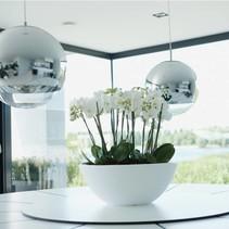 Pure soft bowl Flowerpot