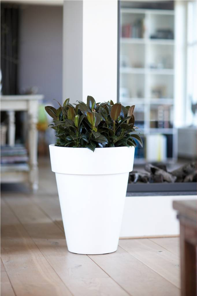 Elho pure round high bloempot geef je tuin terras of interieur een mooie look - Terras tuin decoratie ...